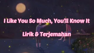 Download lagu I LIKE YOU SO MUCH, YOU'LL KNOW IT (COVER AVIWKILA) LIRIK & TERJEMAHAN