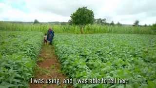 Tanzania Smallholder Farmers Improving Crop Yields
