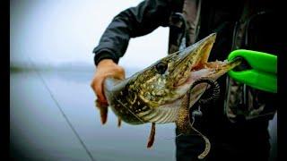 КАК ПОЙМАТЬ ЩУКУ ПОЗДНЕЙ ОСЕНЬЮ И ЗИМОЙ Ловля Щуки на Джиг Спиннинговая Рыбалка