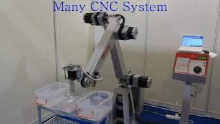 5 axis robot arm