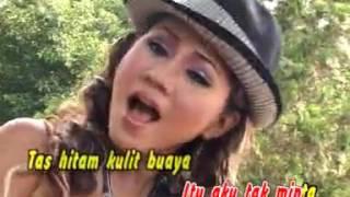 Cover images Dangdut Mix Erma Farany - Sepatu Dari Kulit Rusa
