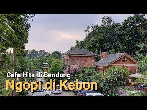 cafe-hits-di-bandung-:-ngopi-di-kebon