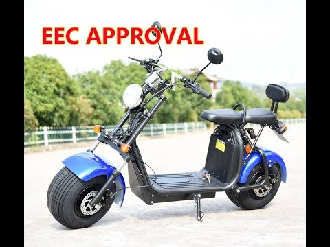 Easy battery detachable battery EEC Citycoco Harley Scooter