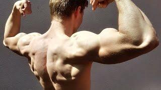 Calisthenics Workout Routine Back Biceps