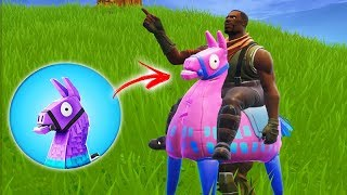 FORTNITE-The NEW SKIN of the LHAMA!!! INCREDIBLE SEASON 06