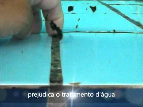 Remover algas piscina youtube for Algas en piscinas de plastico