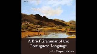 A Brief Grammar of the Portuguese Language: Articles