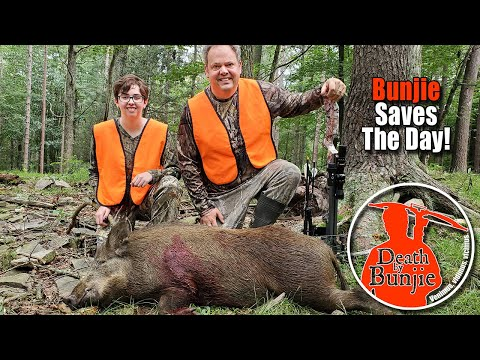 """TWO WILD BOARS with CROSSBOWS! Third Ever """"Meat & Greet"""" Success!"""