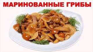 Как мариновать грибы (опята) на зиму? Простой рецепт маринованных грибов в домашних условиях