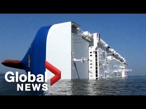 Cargo Ship Carrying 4,000 Hyundai Cars Capsizes Off Georgia Coast