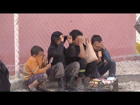 ألمانيا تستقبل 4 أطفال من أطفال داعش في سوريا  - نشر قبل 16 دقيقة