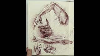 ANATOMY FOR ARTISTS: Anatomy Sketchbook Ideas & Thoughts