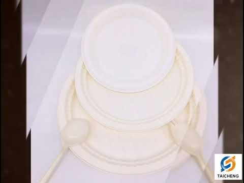 Corn Starch Biodegradable Food Packing Lunch Plate