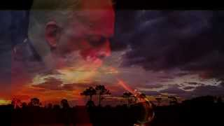 David Gilmour (sax) - Red Sky at Night   (HD1080)