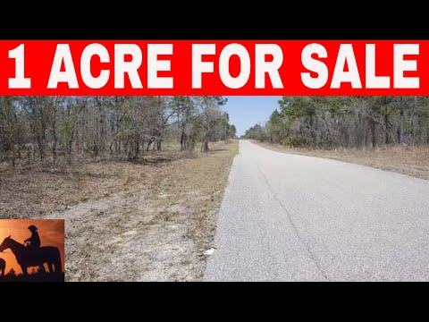 Florida Owner Financed Land 1 Acre For Sale Near Tampa
