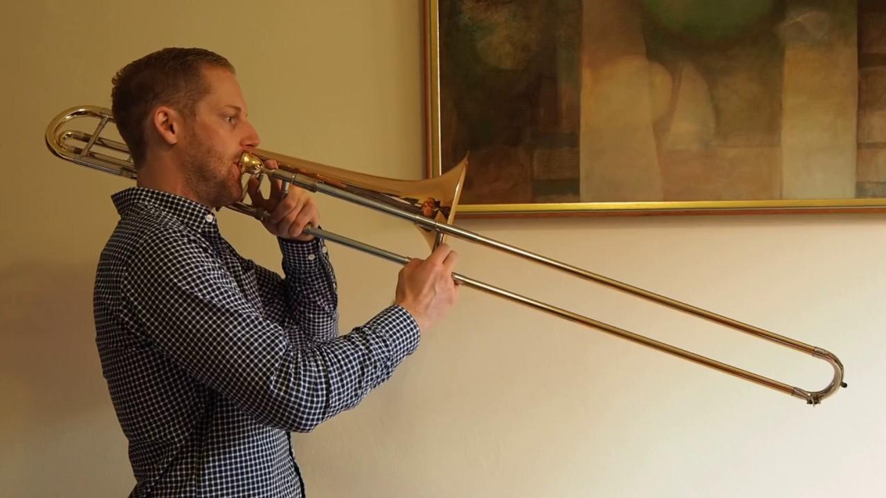 gra-vidatnih-trombonistov-video-porno-muzh-kamushki