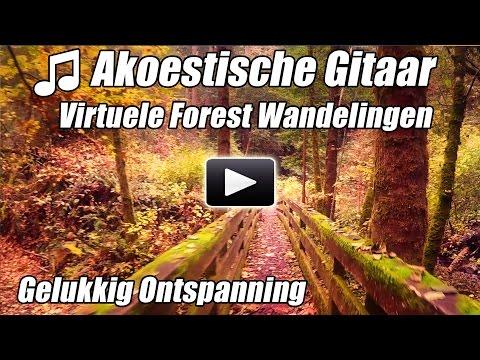 Akoestische Gitaar Instrumentale Virtuele Walking Tour Bos Wandelingen Loopband Video Lopen Thuis on