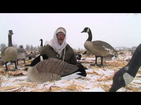 Rochester Real Geese 2014