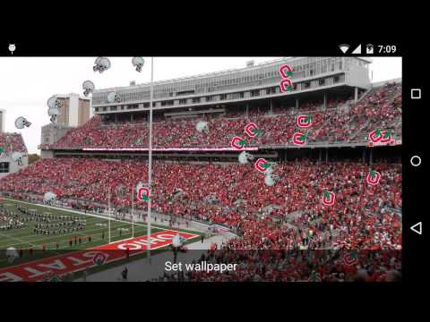 Buckeye Football Live Wallpaper For The Ultimate Ohio State Fan Decorate Your Android Device With This Beautiful And Show