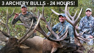 3 Archery Bulls in 24 Hours! All on Camera!