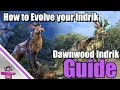 ESO: How to Evolve the Nascent Indrik Mount - Q1 Dawnwood Indrik Mount Guide