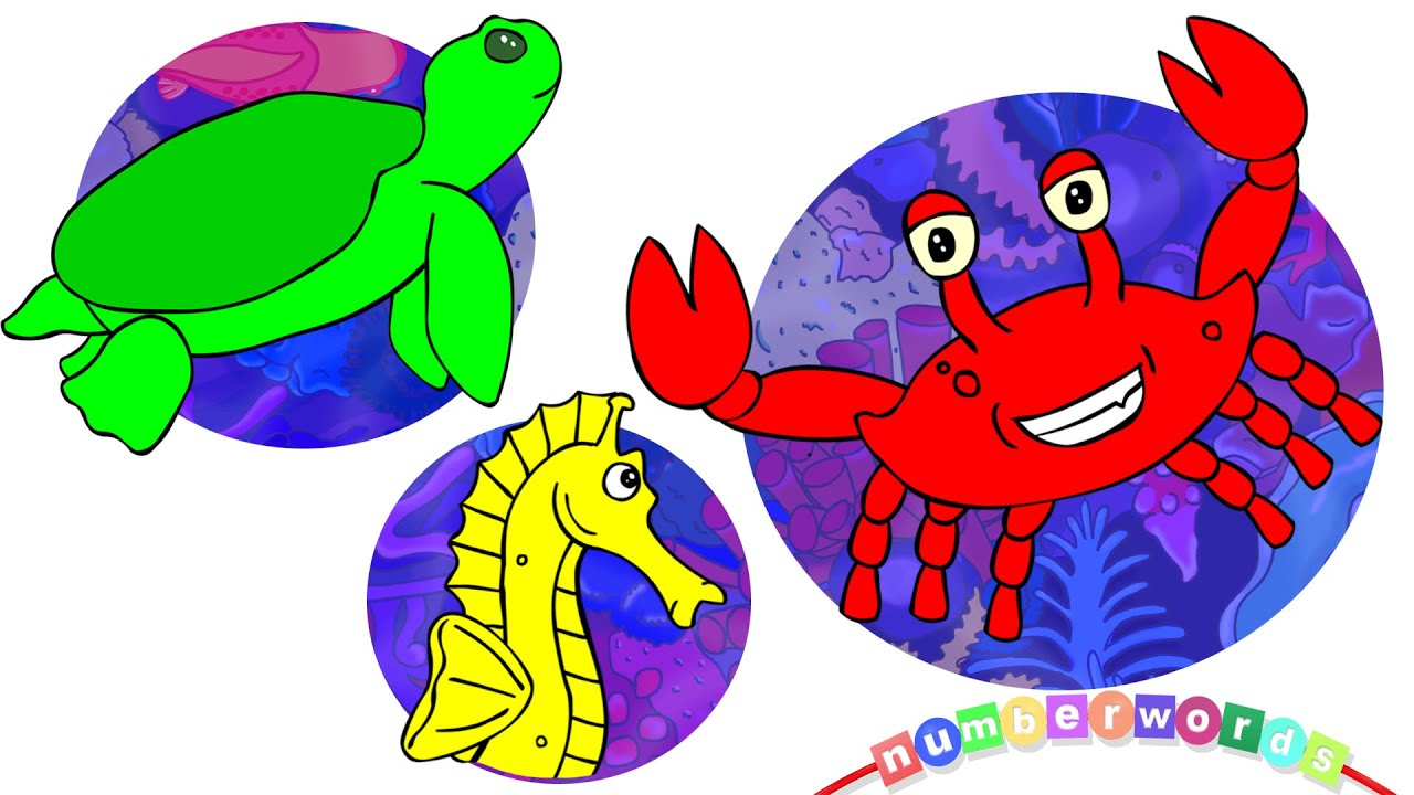 Learn Colors With Sea Creatures Underwater Animation For