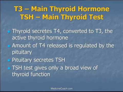 Fundamentals of Bio-Identical Hormone Therapy