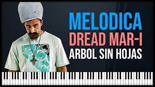 Como tocar: Arbol sin hojas - Dread Mar-i (melodica reggae)