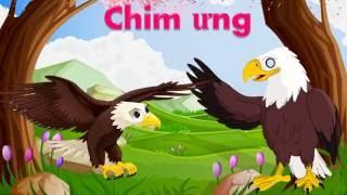 Bé tập nói tiếng Việt | em học các con vật | học đọc những loài chim | Dạy trẻ thông minh sớm