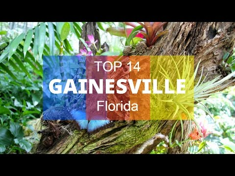 Top 14. Best Tourist Attractions in Gainesville - Florida