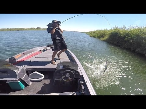 HOW TO BOAT FLIP FISH THE CAHILL WAY