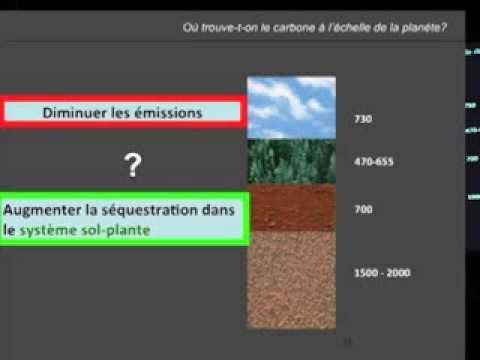 Climat / Carbone - le potentiel agroforestier