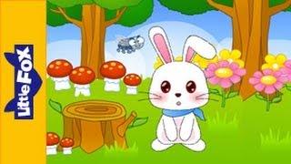 Little Peter Rabbit - Song for Kids by Little Fox
