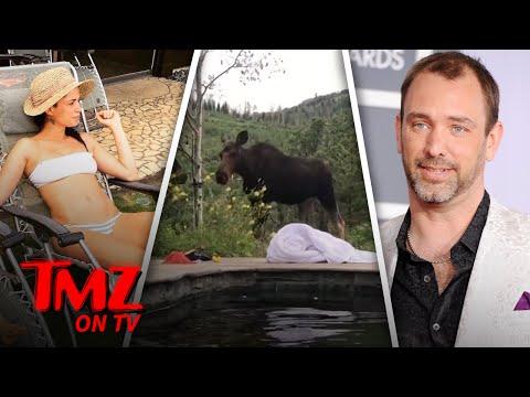 South Park' CoCreator Trey Parker and Family Get Super Close Moose Encounter  TMZ TV