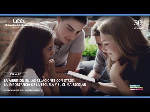Seminario La agresión en las relaciones con otros: la importancia de la escuela y el clima escolar