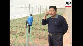 Israeli money boosts Chinese farming village in rare partnership