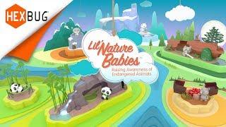 HEXBUG Lil' Nature Babies