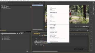 [ecolor.lt] Atbulas video / Reverse video Adobe Premiere Pro