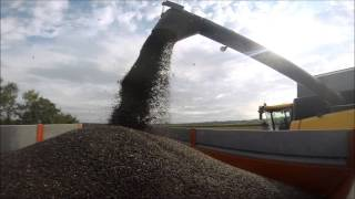 Moisson de Tournesol 2014 [GOPRO] Harvest Sunflower 2014 !