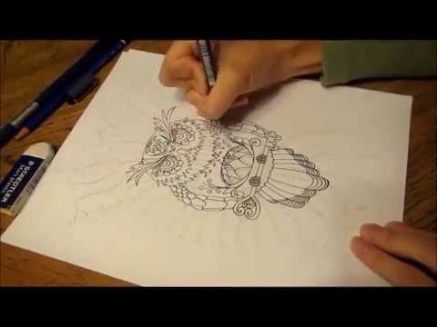 Coloring Pages for Adults - Owl