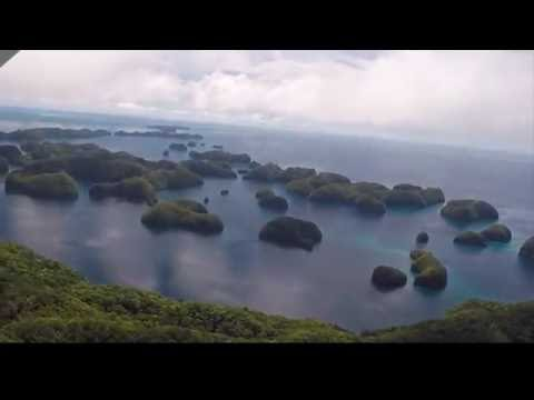 Palau dive trip -- May 2016!!