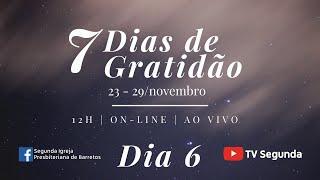 7 Dias de Gratidão - Dia 6