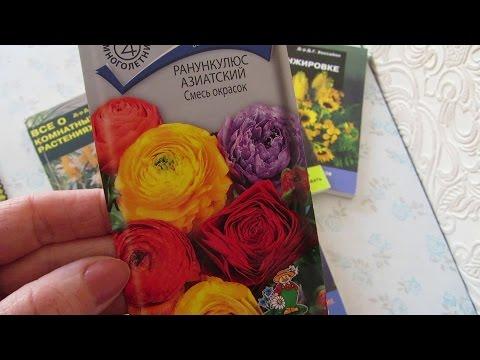 Цветок морозник – посадка и уход: выращивание и размножение морозника; виды и сорта морозника