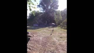 Рыбалка и отдых р.Десна(Это видео создано с помощью видеоредактора YouTube (http://www.youtube.com/editor) Рыбалка и отдых р.Десна., 2015-07-25T13:10:30.000Z)