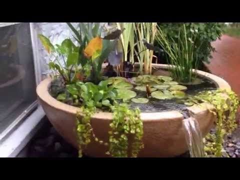 How to make a small area beautiful with a water feature or pond Monroe County Rochester NY