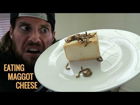 Can Humans Eat Maggot Cheese? | L.A. BEAST
