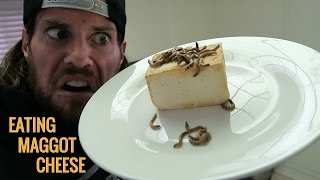 Can Humans Eat Maggot Cheese?   L.A. BEAST