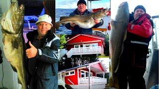 Давай поедем на рыбалку. Фестиваль трофейной трески в Норвегии, база - Vennesund. Рыболовное сафари.