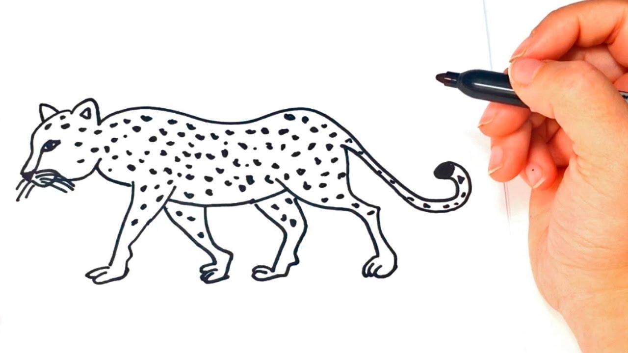 Cómo dibujar un Leopardo paso a paso | Dibujo fácil de Leopardo ...
