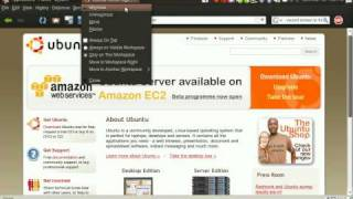 ubuntu compiz window maximize bug